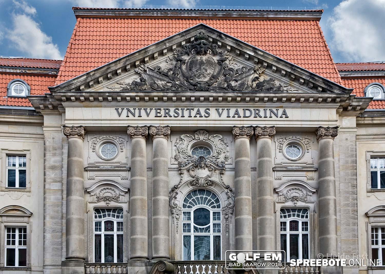 Course Image Viadrina Studienbrücke 2020 - Wirtschaftswissenschaften